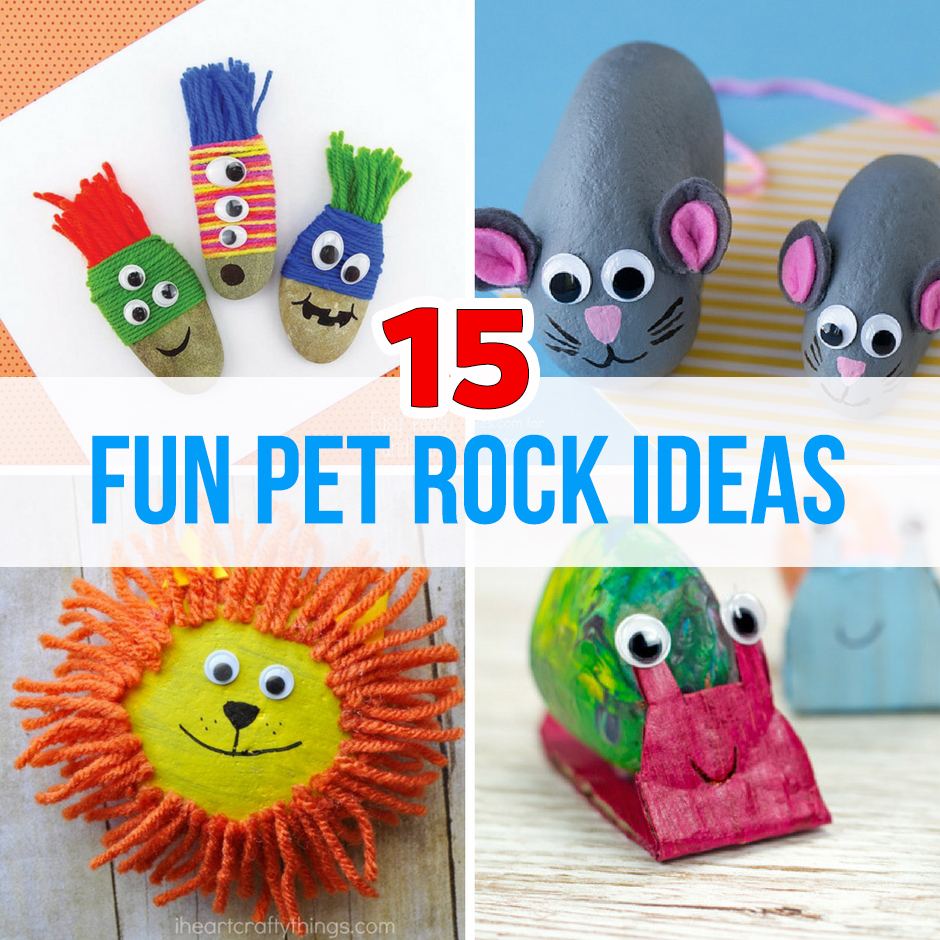 15 Fun Pet Rock Ideas