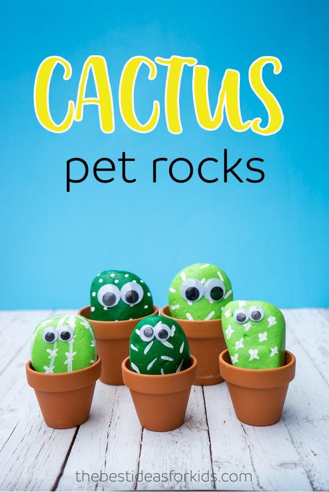 Cactus Pet Rocks