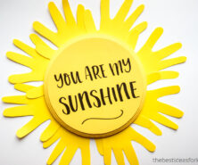 You are my sunshine craft