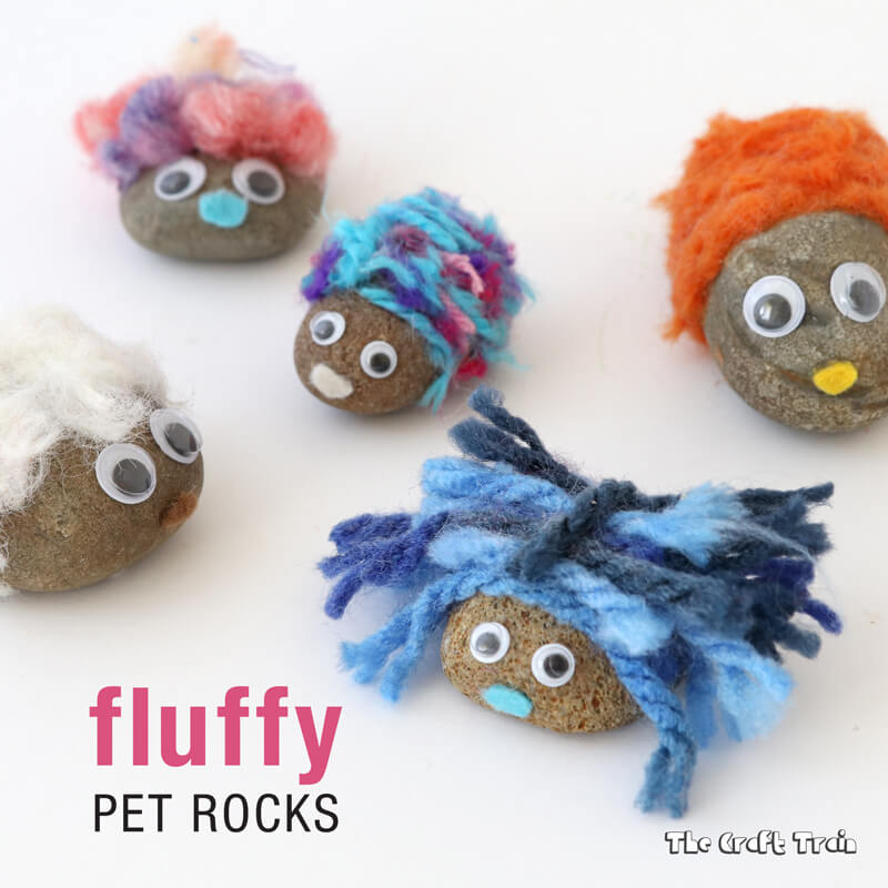 Fluffy Pet Rocks