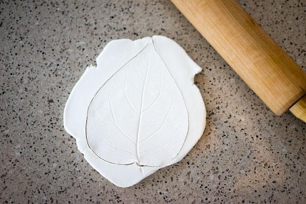 Cut Around Leaf