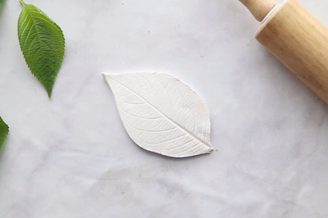 Cut out Leaf from Clay