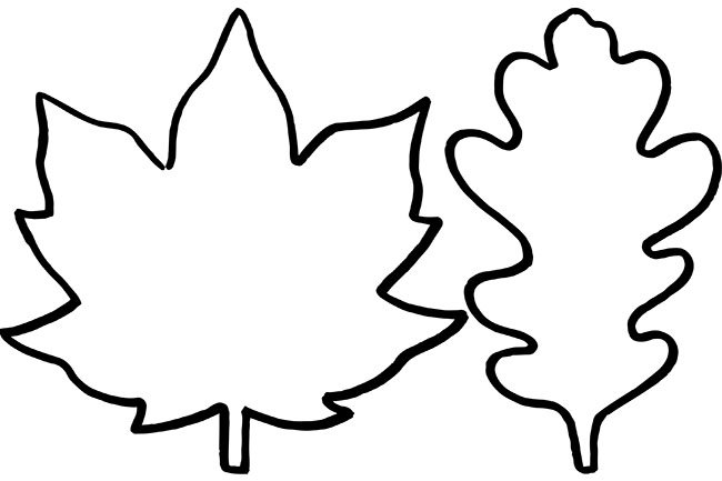 Impeccable image intended for leaf outline printable
