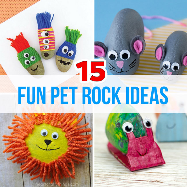Pet Rock Ideas