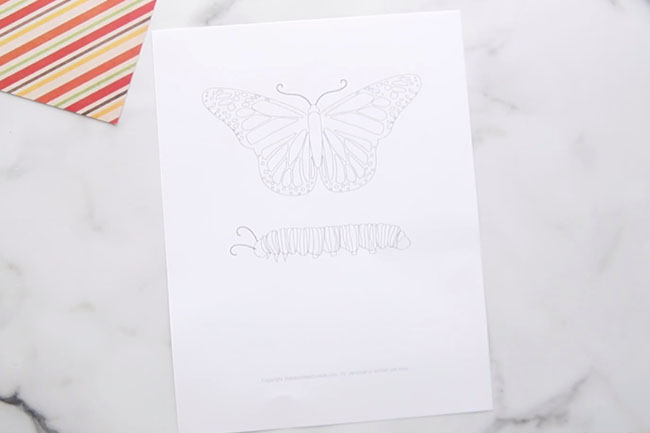 Butterfly Life Cycle Printable