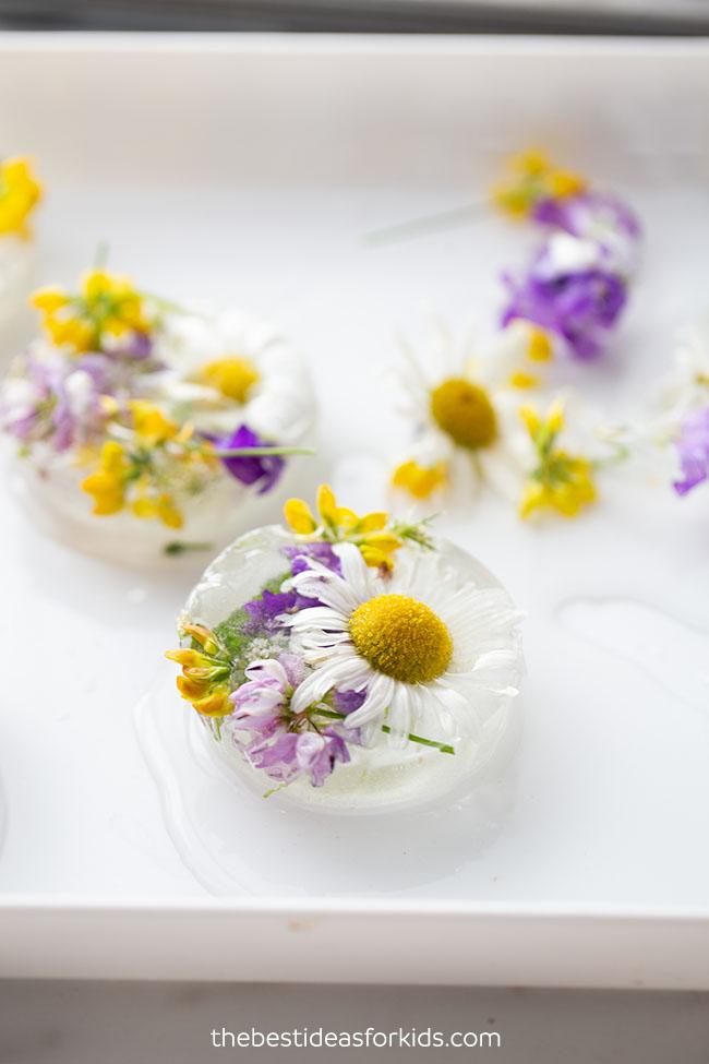 Frozen Flowers Sensory Activity