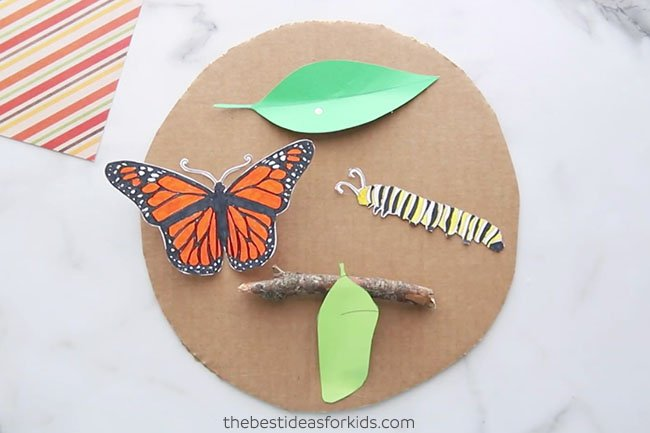 Glue Template to Cardboard