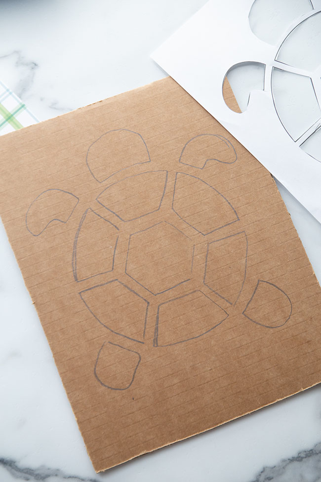 Turtle Shape on Cardboard
