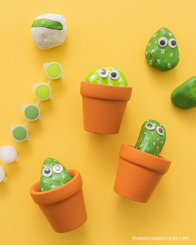 Cactus Rock Kit for Kids