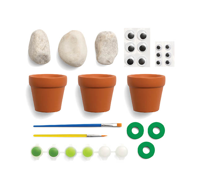 Cactus Rock Painting Kit