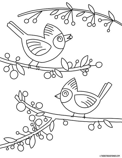 Cardinals Coloring Page