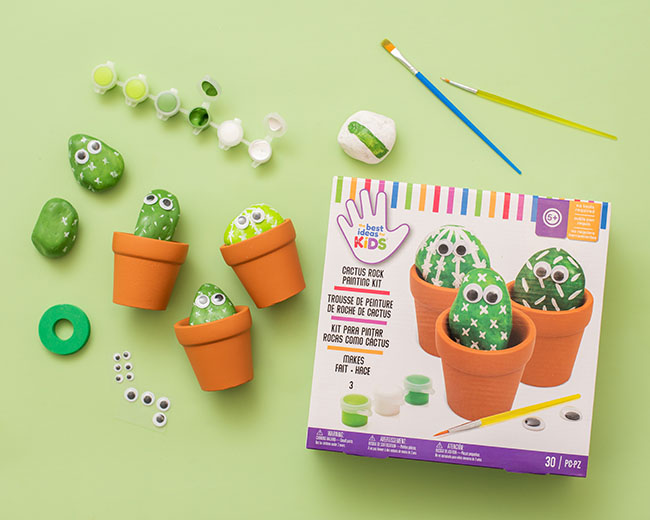 Rock Cactus Craft Kit for Kids