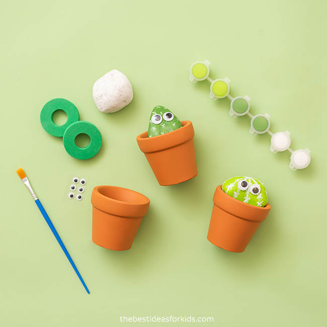 Rock Painting Cactus Kit